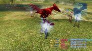 Lv99-Red-Chocobo-Steal-FFXII-TZA