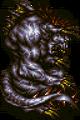 PFF King Behemoth FFVI