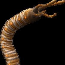 Worm 1 (FFXI).png