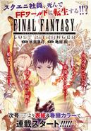 FFLS Promotional