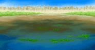 FFVA Marsh BG