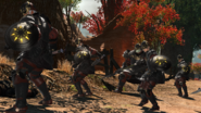 FFXIV Imperial Infantries