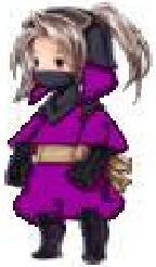 Ninja of Wind.jpg