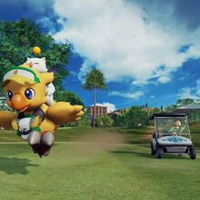 Everybody's Golf FF items.jpg