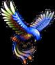 FFV Ibis di mare IOS.png