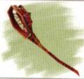 Priest's Racket