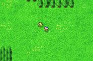 FFII Chocobo Forest GBA