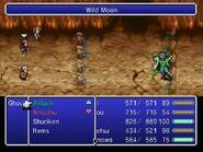 TAY Wii Wild Moon