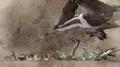 Cleigne-Bestiary-Background-FFXV