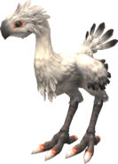 FFXI White Chocobo