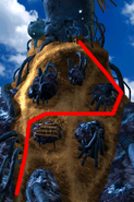 Condor War enemy path 8