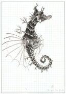Seahorse FFIII Artwork