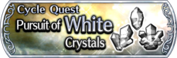 DFFOO Cycle Quest White banner GLS.png