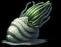 Aquathorn