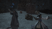 IVth Legion Mystics