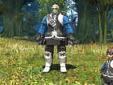 Biggs and Wedge (Final Fantasy XIV)