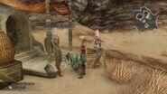 Desert-Wayfarer-FFXII-TZA