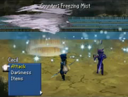 FFIV Freezing Mist DS