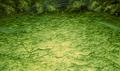 FFIV PSP Wind Cave