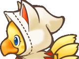 White Mage (Chocobo's Dungeon)