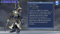 DFFOO Guide Warrior of Light