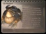 Bestiary (Final Fantasy XII)
