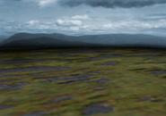 Battlebg-ffvii-swamp