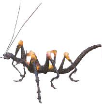 Critical Bug (Final Fantasy X-2)