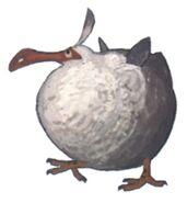 Dodo Minion FFXIV Art