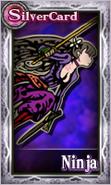 Knightsofthecrystals-NinjaFemale
