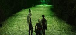 Golmore-Jungle-Secret-Path-FFXII-TZA.png