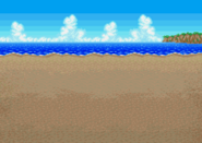 PFF Beach