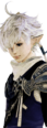 Alphinaud Full Trust Portrait from Final Fantasy XIV.png