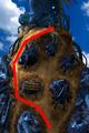 Condor War enemy path 10