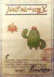 XII Steckbrief Blütenkaktor