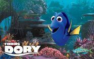 Disney-pixars-finding-dory1.jpg.cf