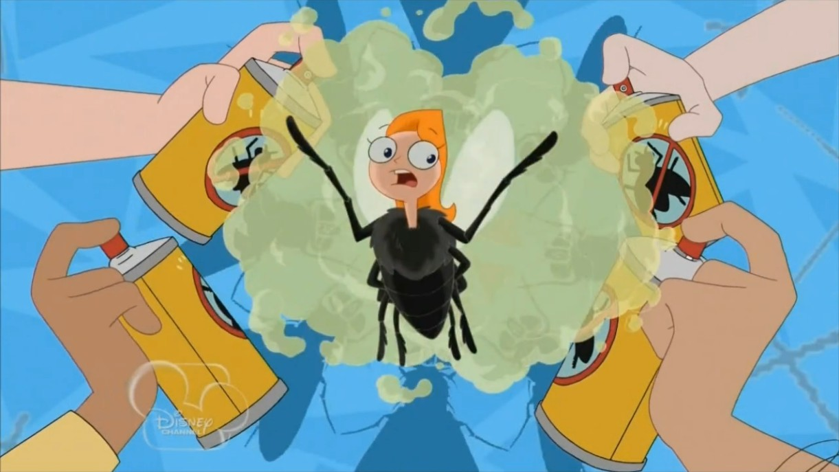 Jesteś muchą jak ja