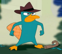 Perry!.png