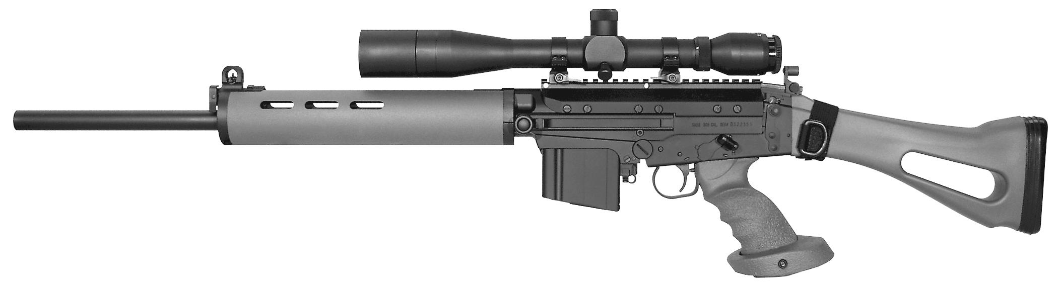 DS Arms SA58 Graywolf
