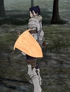 Felix with Aegis Shield