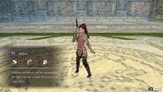 Petra fighter