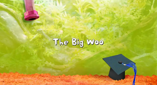Click here to view more images from The Big Woo.