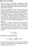 Fernanda Neckel Diniz imagem 10