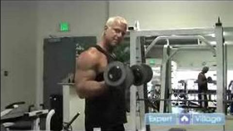 Weight_Lifting_Exercises_for_Beginners_Dumbbell_Biceps_Curl_Weight_Lifting_Exercise_for_Beginners