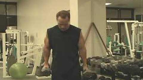 Biceps_Workouts_-_Weight_Training_Exercises_For_Big_Arms