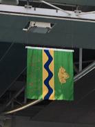 Wagga flag above pool
