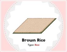 Brown Rice - Sushiria.png