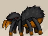 Arachnip