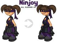 Ninjoy clean