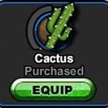 A5 Cactus.jpg